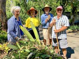 Buderim volunteer has been giving back for 20 years
