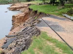 Flood damage blamed on rainforest planting