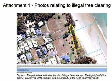 The area where the casuarina trees were cleared.