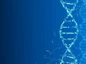 Is religion a matter of faith or of genetics?