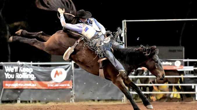 ROUGH RIDING: Cody Angland, on Catyact Cowboy, shows off his bronc riding skills.