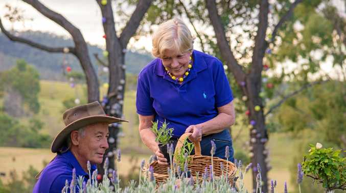 BLOOMING BEAUTIFUL: Gary and Anne Young assess their lavender ahead of the TALGA conference.