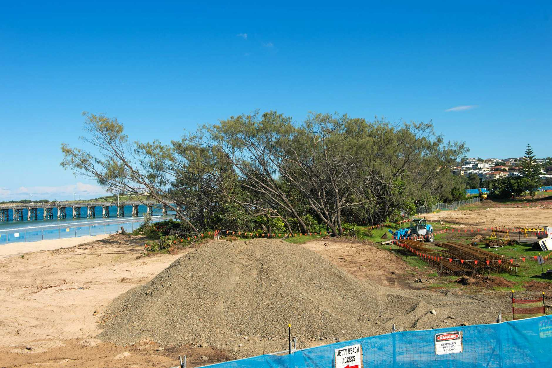 Business leaders have called on Coffs Harbour City Council to consider thinning or felling trees on Jetty Beach before building a new boardwalk which seemingly will miss out on harbour views due to the dunal vegetation.