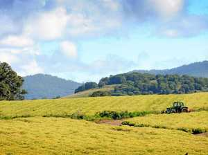 Gympie's farmland values have increased 3% in the past year.