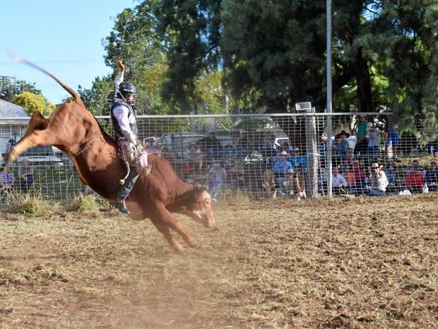WILD RIDE: Lane Mellers, 18, takes out two competitions during the rodeo at the Mundubbera Show.