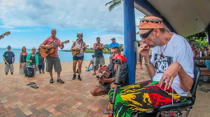 HE'S BACK: Steady Eddy grooving at the Airlie Beach Festival of Music jam session last year.