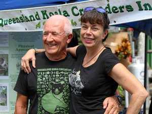 Queensland Day medal for koala crusader