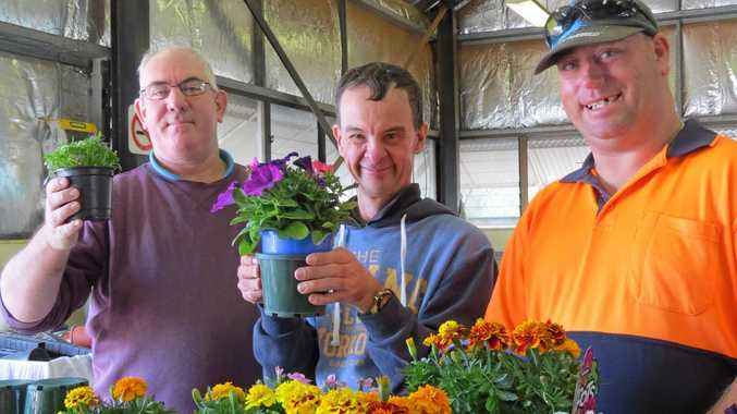 BLOOMING EXCITED: Graeme Smith (left), Scott Grant and Ross Kneipp are preparing the flowers for the Waminda Markets today.