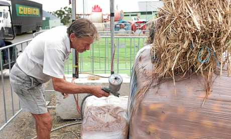 HANDY RANDY: Signwriter and hay bale artist Randy Kelly puts his finishes touches on some of the animals made out of hay..