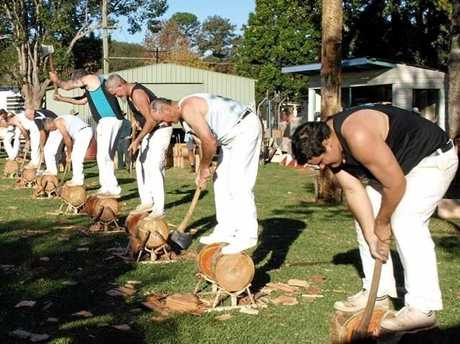 Woodchopping at the Bellingen Show.