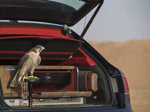 Room for the birds? Bentley Bentayga Falconry