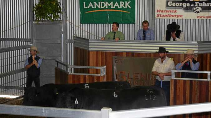 TOP PRODUCT: Lot 5 at the Glenisa sale went for $17,000.