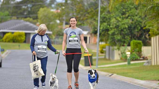 MILLION PAWS WALK: Ingela Warwick with Frodo and Nicole Allison with Mavis prepare for this weekend's walk.