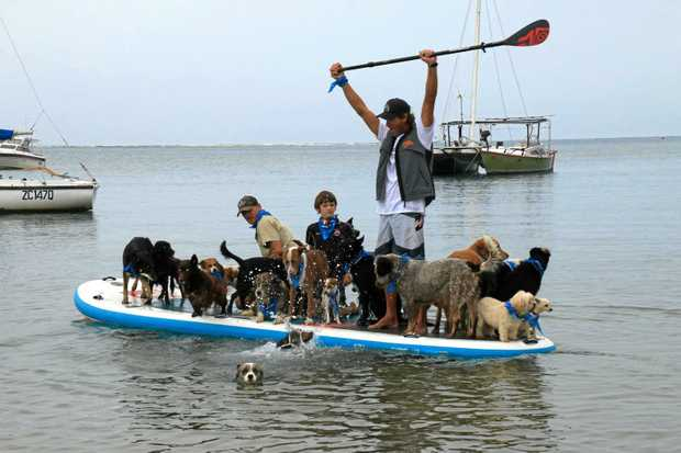 WORLD'S BEST:  Chris De Aboitiz set a world record after carrying 26 dogs on his stand-up paddleboard.