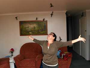 WATCH: Bats invade Bundy home while owner sips her tea