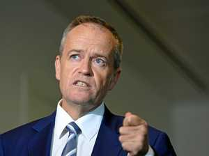 Shorten takes fresh jab at Turnbull over RSRT