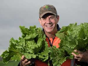 Lockyer Valley farmer wins the top horticulture award
