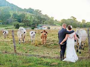 Online dating to wedding bells in less than 12 months