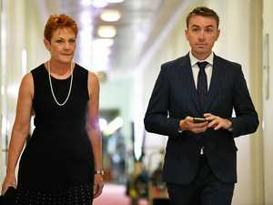 Police talk to Pauline Hanson advisor James Ashby
