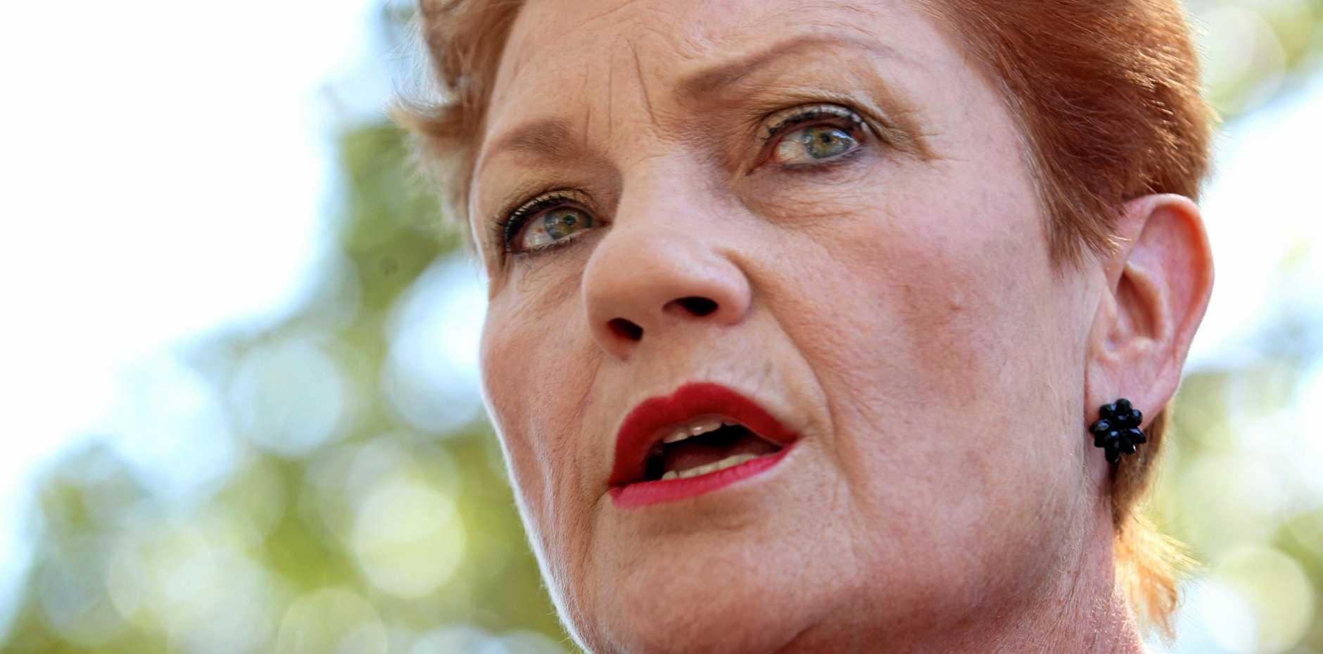 OUTSPOKEN: One Nation leader Pauline Hanson.