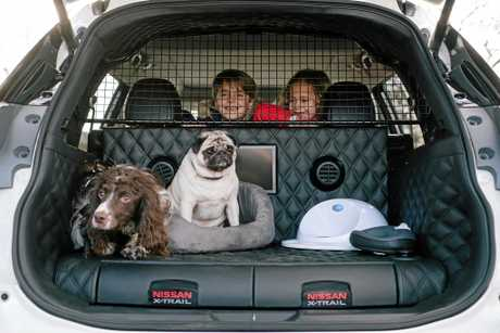Nissan's X-Trail 4Dogs concept.