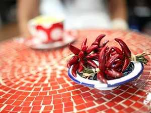 The Ignite Chilli Festival is coming to Caloundra in November.