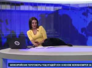 Dog becomes viral sensation after crashing news broadcast