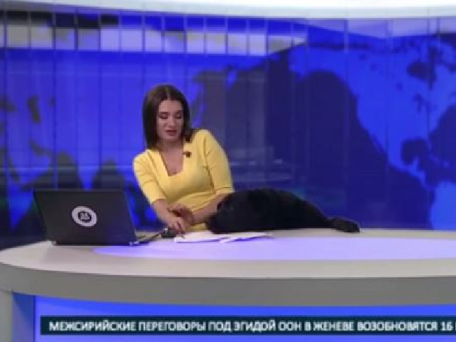 The newsreader wasn't so sure about her new companion.