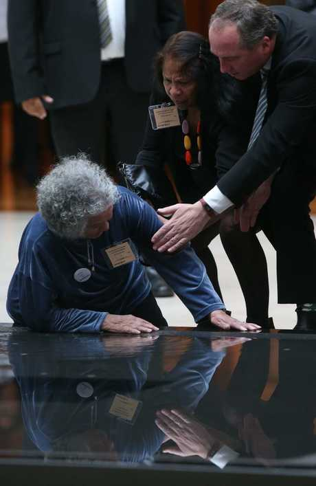 Barnaby Joyce checks on an elderly woman after she fell into a pool at Parliament House.