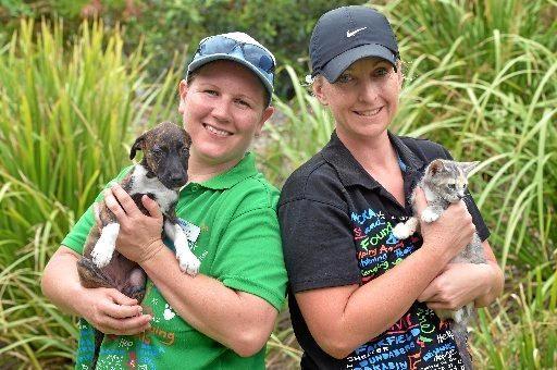 HELPING HANDS: Mackay RSPCA animal attendants Nerida Keen and Leanne Hoban with Sweetie, the 10-week-old Dutch shepherd cross and Hilary the domestic shorthair-cross kitten.