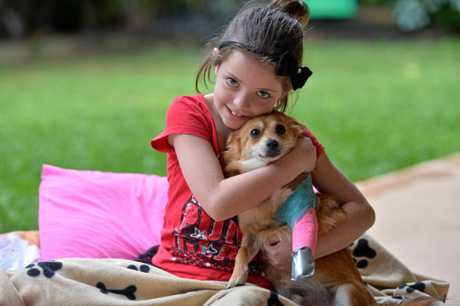 Evie Marshall with her doggie and best friend Squirt in 2013.