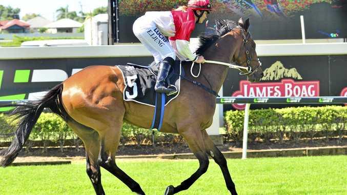 RISING STAR: Jockey Emma Ljung rides Toowoomba gelding Niccanova in a previous start.