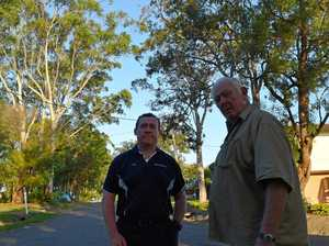 Residents fear timber threat from above
