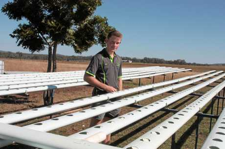 Josh Paterson with some of his hydroponic growing tables at Flare Specialty Produce.