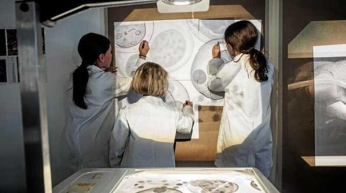 CASP 2016 The Microscope Art Project Mullumbimby