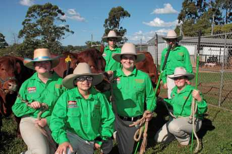 Preparing the Wilsonton State High School cattle for Ekka are (from left) Gracie Gadsby, Eric Cassells, Connor Reed, Dennis Petersen, Wyatt Wilson and Grace Campbell.