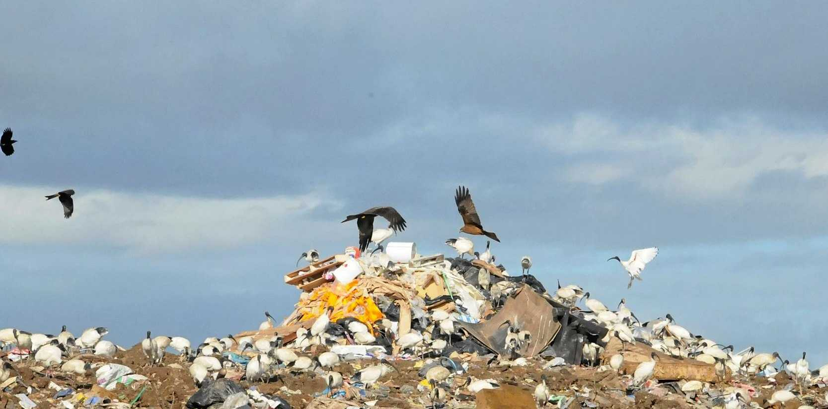 Gympie Regional Council will vote on a proposal to shrink hours, close sites at rubbish dumps around the region.
