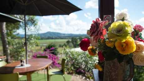 The sun-drenched view from Lawrence and Susan Watsford's cafe near Imbil. Picture: Jen Dainer