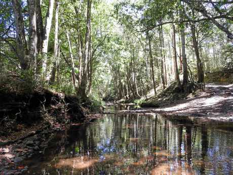 A lovely water hole at Long Timber, a Sunshine Coast property listed on Youcamp.com.