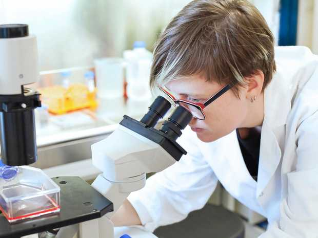 NSW will for the first time offer Year 12 high school students a high level science course that allows students to carry out a scientific research project.