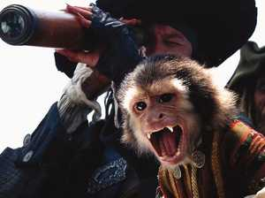 Pirates of the Caribbean's vomiting monkey lands Disney in hot water