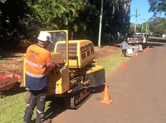 A contractor for the Sunshine Coast Council grinds down the remaining stumps left after a row of fruit trees were cut down in Buderim's Urban Food Street area.