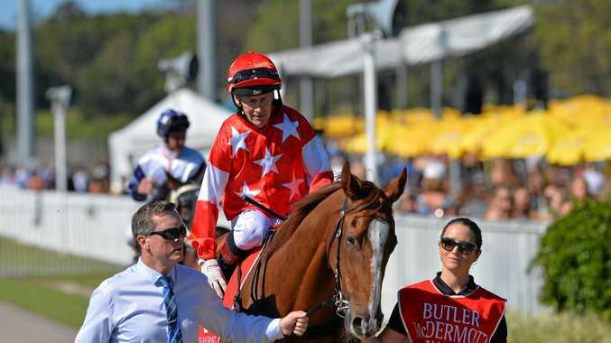 WINNER: Miss Chattering with rider Jeffrey Lloyd.