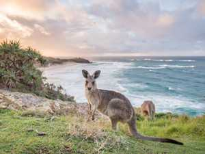 8 things you didn't know you could do at North Straddie