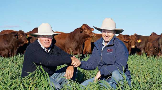PARTING WAYS: Santa Gertrudis Australia Association president Scott Ferguson and outgoing general manager Ben Noller.
