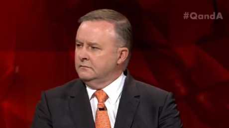 Opposition infrastructure minister Anthony Albanese on the Q & A panel.