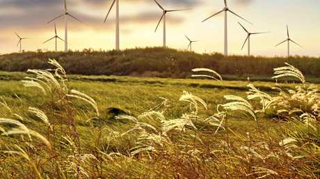 Wind farms could soon become a part of the CQ landscape.