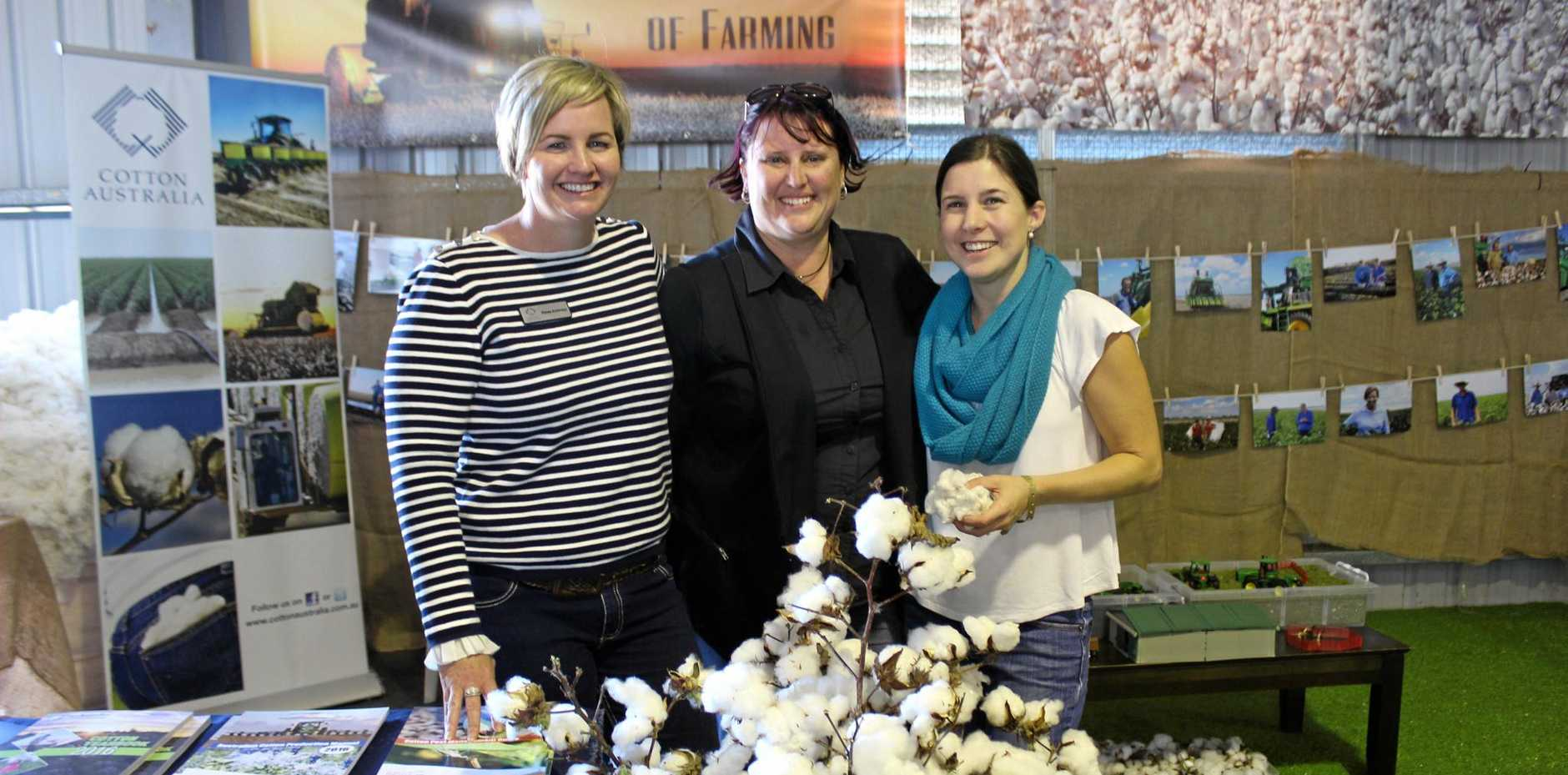 PICKING TIME: Cotton Australia central Queensland regional manager Renee Anderson, DAF technical officer Gail Spargo and local cotton grower Beth Burnett show some of the season's successful crop at the Emerald Show.