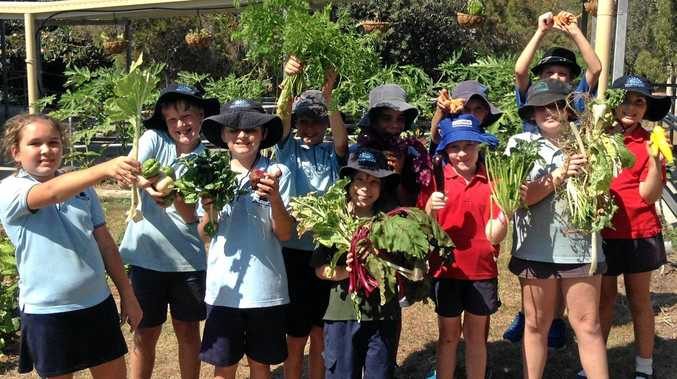 OUTDOORS: Students learn about food by growing it.