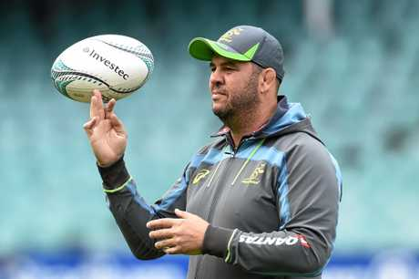 Wallabies coach Michael Cheika looks on during a training session
